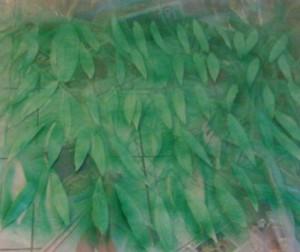 feuilles_apres_peinture